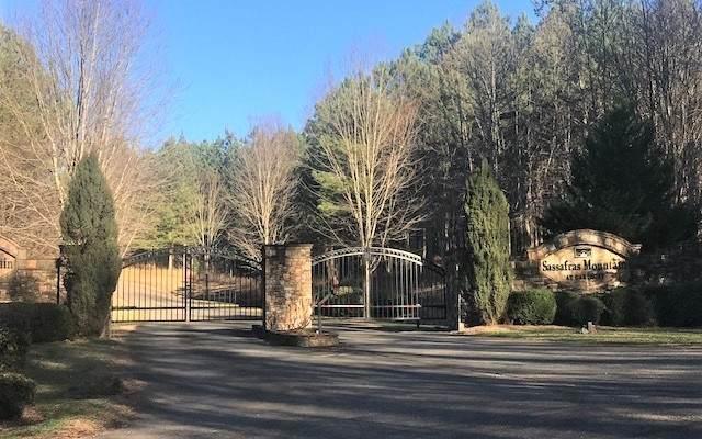 LT 30 Foxpaw Leaf Lane, Ellijay, GA 30536 (MLS #304397) :: Path & Post Real Estate