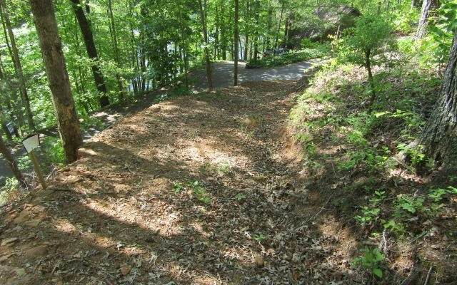 0 Lonesome Pine Rd, Murphy, NC 28906 (MLS #304426) :: Path & Post Real Estate