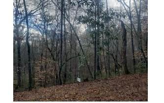 0 Appalachian Hwy - Photo 1