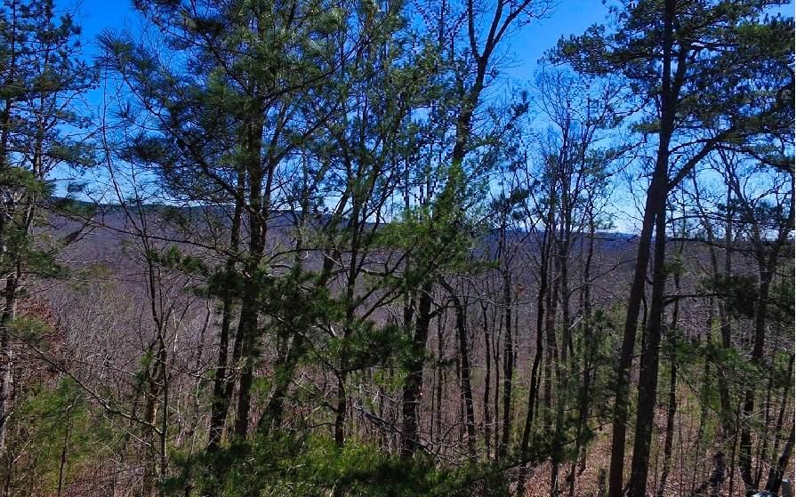LT181 Doll Mountain Road - Photo 1