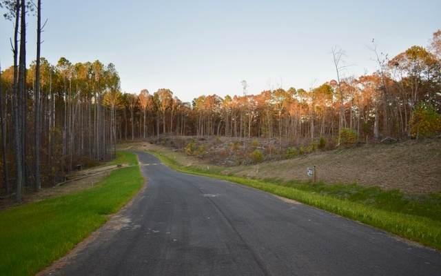 LT 48 Linger Longer, Ellijay, GA 30536 (MLS #305527) :: Path & Post Real Estate
