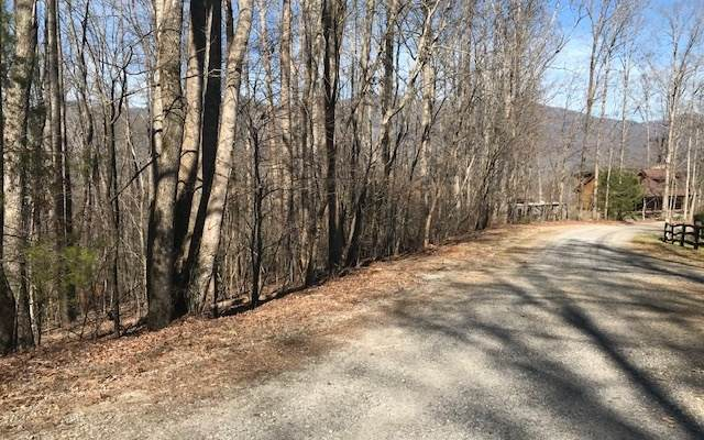 LT 96 Shiloh Stables, Hayesville, NC 28904 (MLS #305773) :: Path & Post Real Estate