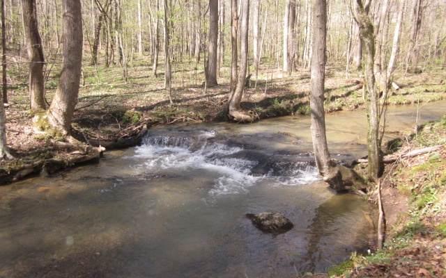 TR 3 Jones Mountain Road, Talking Rock, GA 30175 (MLS #305825) :: RE/MAX Town & Country