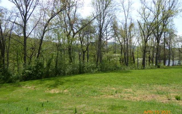 LT 12 Meadows At Chatuge, Hayesville, NC 28904 (MLS #306026) :: RE/MAX Town & Country