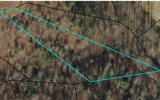 105 The Nest At Brr, Young Harris, GA 30582 (MLS #306779) :: Path & Post Real Estate