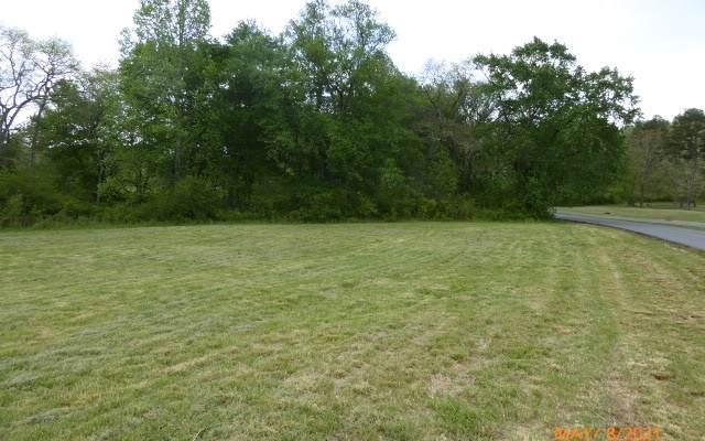 LT158 Owen Glen, Blairsville, GA 30512 (MLS #306790) :: RE/MAX Town & Country