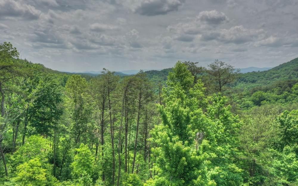 Kimsey Mountain Hwy - Photo 1