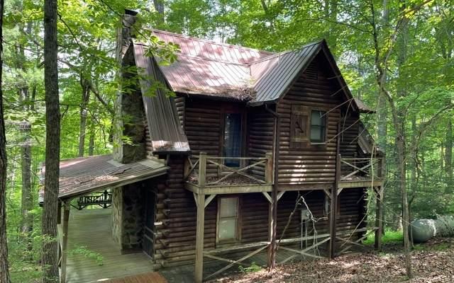 315 Apple Creek Road, Blue Ridge, GA 30513 (MLS #308003) :: RE/MAX Town & Country