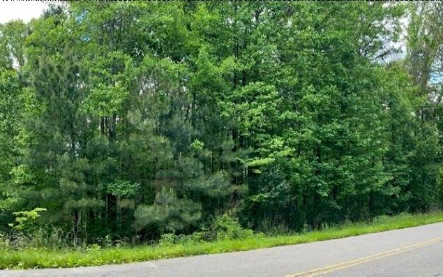 00 Old Tails Creek Rd - Photo 1