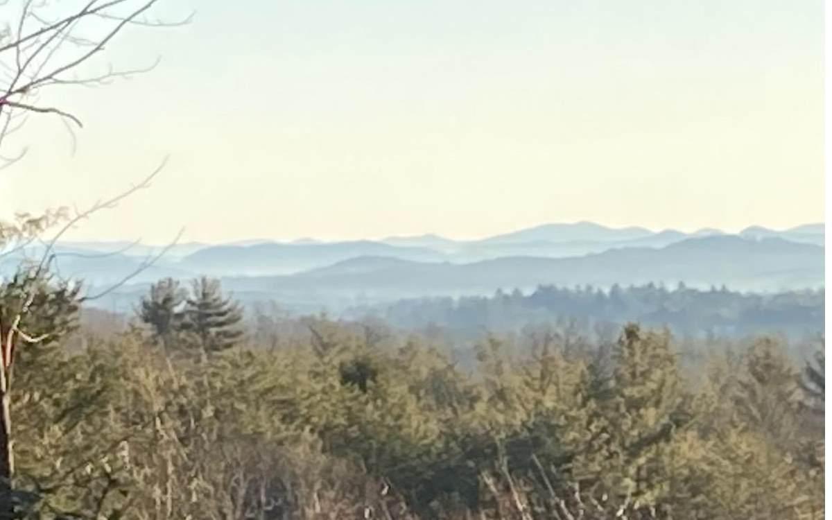 LOT 3 Turkey Pen Ridge - Photo 1
