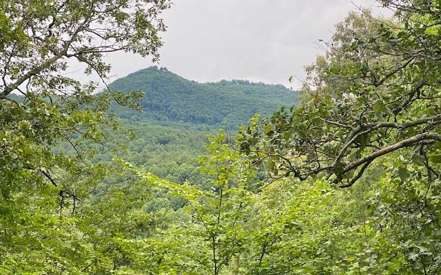 0 Bristol Ridge - Photo 1