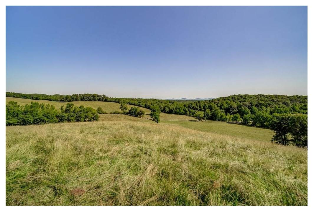 198.9 Acres On Orchard Ln - Photo 1