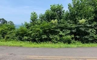 6 B Ramey Mountain, Hiawassee, GA 30546 (MLS #309163) :: RE/MAX Town & Country