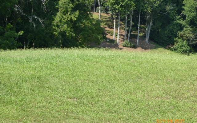 LT 1D Mountain Harbour, Hayesville, NC 28904 (MLS #310564) :: Path & Post Real Estate