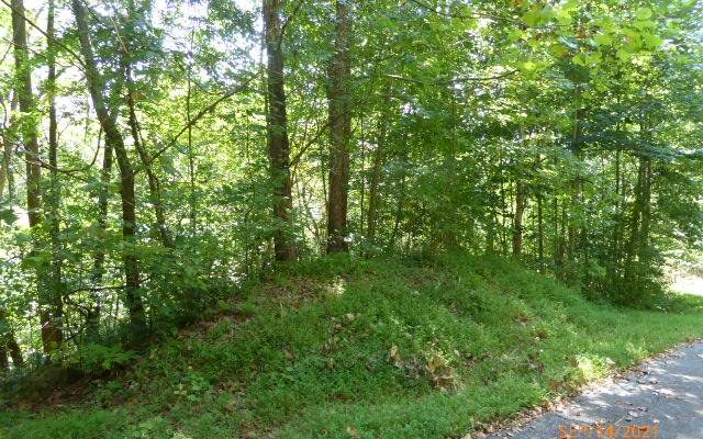 38C Mountain Harbour, Hayesville, NC 28904 (MLS #310580) :: Path & Post Real Estate