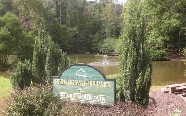 L 286 Vistaview Pkway, Jasper, GA 30143 (MLS #311368) :: Path & Post Real Estate