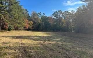 State Hwy 325, Blairsville, GA 30512 (MLS #311504) :: Path & Post Real Estate