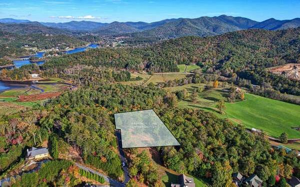 2384 Brown Heights Rd, Hiawassee, GA 30546 (MLS #311543) :: RE/MAX Town & Country