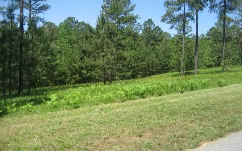 LT 63 Brookgreen Ct, Blairsville, GA 30512 (MLS #223180) :: RE/MAX Town & Country