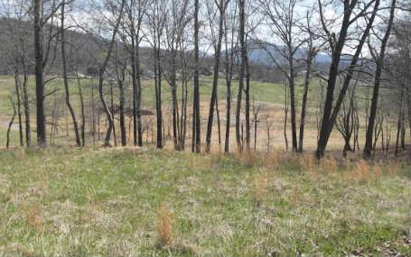 LOT10 Sneaking Creek Drive, Hayesville, NC 28904 (MLS #227574) :: RE/MAX Town & Country