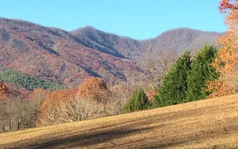LOT 5 Mission Hill Estates, Hayesville, NC 28904 (MLS #246496) :: RE/MAX Town & Country