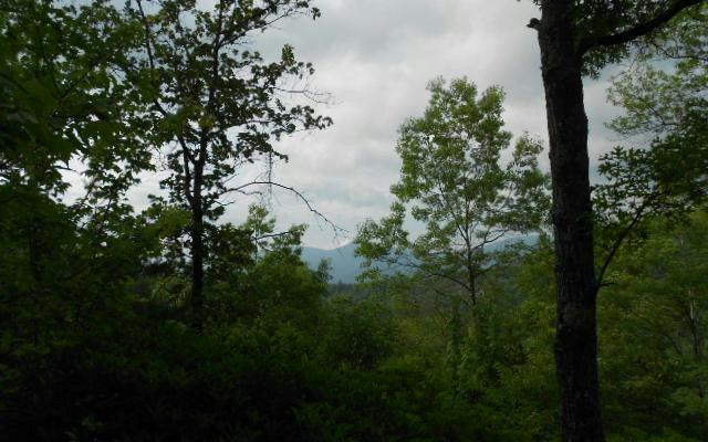 LOT 4 Tipton Heights, Hiawassee, GA 30546 (MLS #249172) :: RE/MAX Town & Country