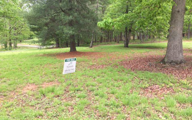 LOT1A Wild Horse Canyon, Blairsville, GA 30512 (MLS #253378) :: RE/MAX Town & Country