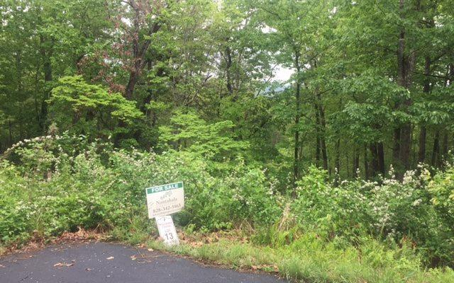 LOT13 Brumby Run, Blairsville, GA 30512 (MLS #253379) :: RE/MAX Town & Country