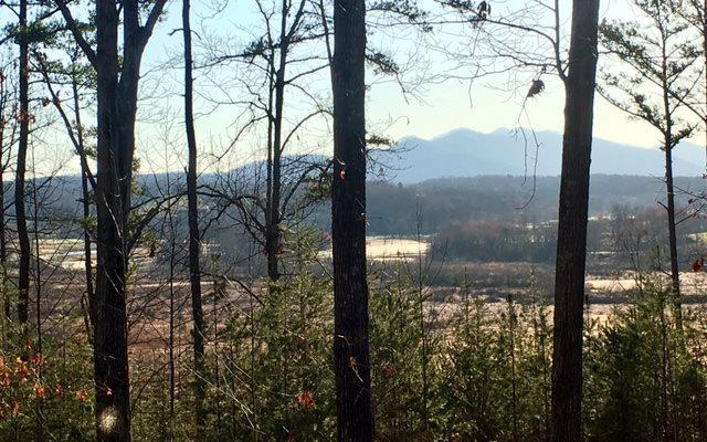 LOT3 Enchanted Woods, Blairsville, GA 30512 (MLS #266377) :: RE/MAX Town & Country