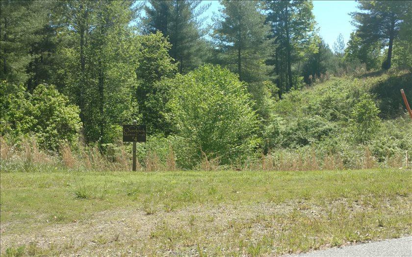 LT 4 Point Overlook Trail - Photo 1