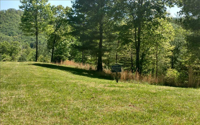 LT 11 Point Overlook Trail - Photo 1