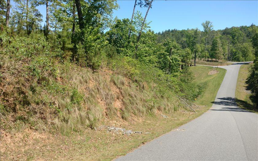 LT 14 Point Overlook Trail - Photo 1
