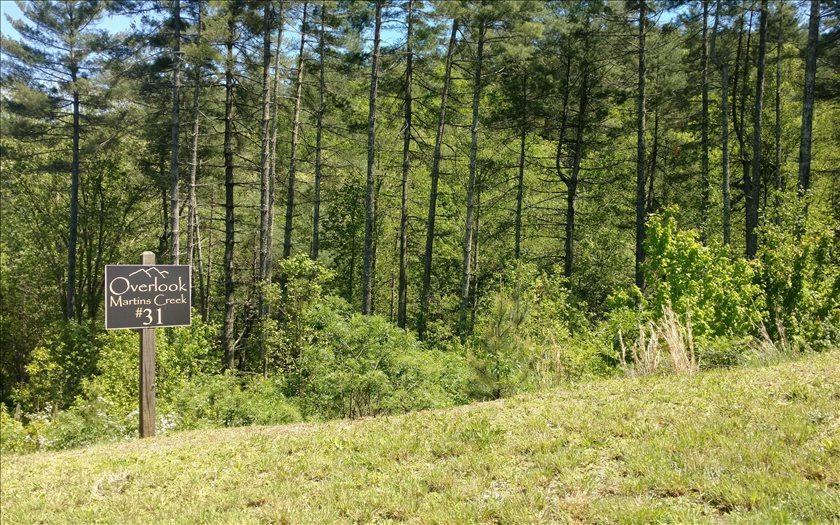 LT 31 Point Overlook Trail - Photo 1