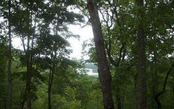 LT 3 Chatuge Crest, Hayesville, NC 28904 (MLS #267421) :: Path & Post Real Estate