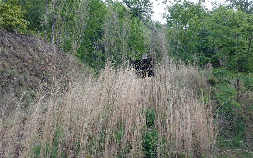 L 110 Overlook Brasstown - Photo 1