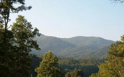 736 Deer Lane, Hiawassee, GA 30546 (MLS #268258) :: Path & Post Real Estate