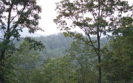 #13 Clark Hill, Hiawassee, GA 30546 (MLS #269223) :: RE/MAX Town & Country