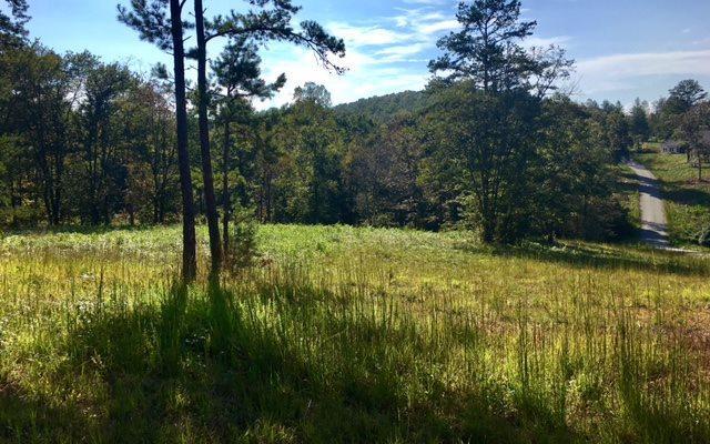 LT 23 Brookwood Hills, Blairsville, GA 30512 (MLS #271691) :: RE/MAX Town & Country