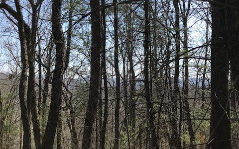 Brown Mountain 6.58, Suches, GA 30572 (MLS #274697) :: RE/MAX Town & Country