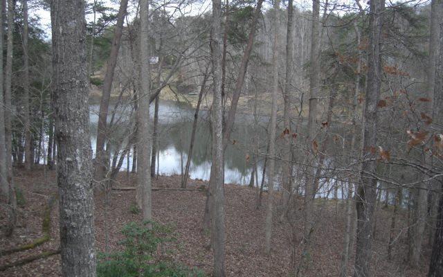 Barrks Farm Road, Morganton, GA 30560 (MLS #275234) :: RE/MAX Town & Country