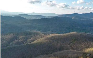 LT 51 Mountain High, Mineral Bluff, GA 30559 (MLS #275252) :: RE/MAX Town & Country