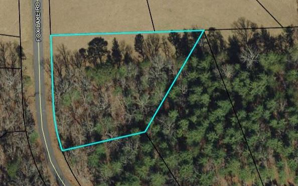 LT 24 Fox Lake, Blairsville, GA 30512 (MLS #276513) :: RE/MAX Town & Country