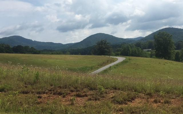 LT 21 Deer Meadow Lane, Murphy, NC 28906 (MLS #279395) :: RE/MAX Town & Country