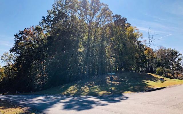 LT 88 Oak View Dr, Ellijay, GA 30540 (MLS #283712) :: RE/MAX Town & Country