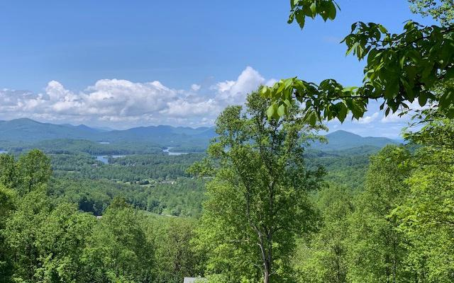46-A High Meadows, Hayesville, NC 28904 (MLS #288056) :: RE/MAX Town & Country