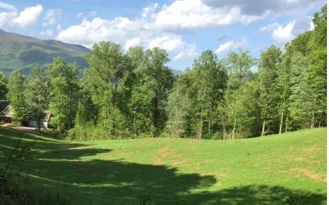 87/88 Shiloh Stables, Hayesville, NC 28904 (MLS #290574) :: Path & Post Real Estate