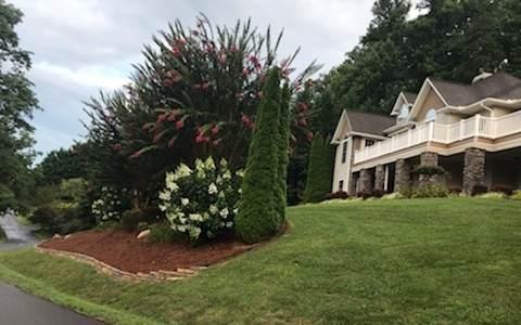 317 Ash Branch Circle - Photo 1