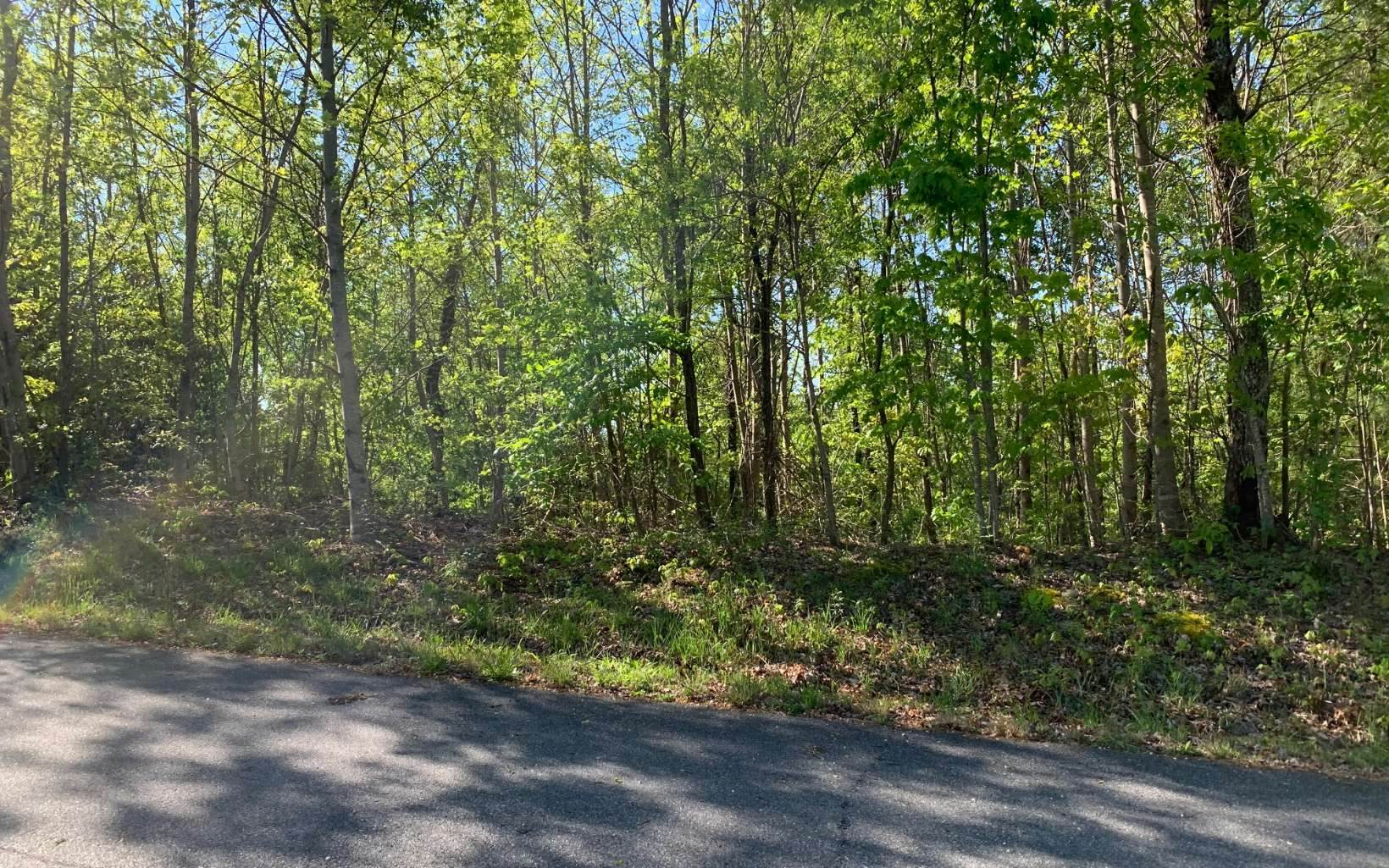 L 57 Fires Creek Cove - Photo 14