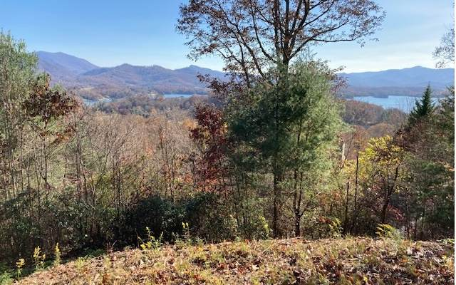 LOT 2 Overlook Drive, Hayesville, NC 28904 (MLS #301152) :: Path & Post Real Estate