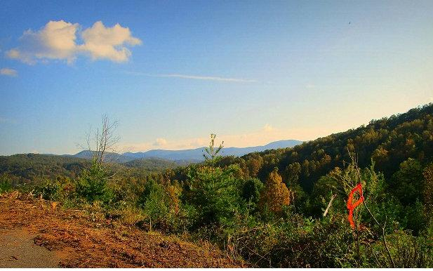 LOT 5 Town Creek Overlook, Blairsville, GA 30512 (MLS #271949) :: RE/MAX Town & Country